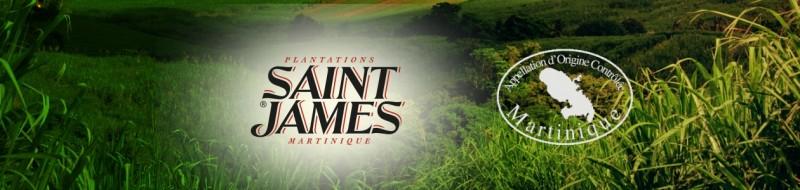 media/image/saint-james-banner-2.jpg